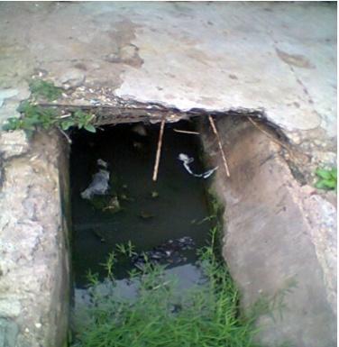 cholera5